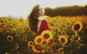 Picture summer, sunflowers, the girl in the red