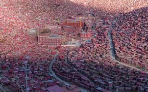 Picture home, China, Tibet, the monastery, Sichuan, Seda