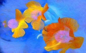 Picture water, line, flowers, rendering, petals