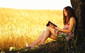 Picture wheat, field, girl, tree, book, ears, reading