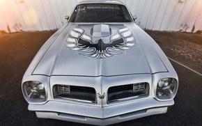 Picture Pontiac, Firebird, Trans Am, 1973
