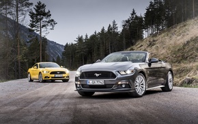Picture Mustang, Ford, Mustang, convertible, Ford, Convertible, 2015, EU-spec