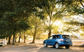Picture trees, Park, blue, Subaru, Forester