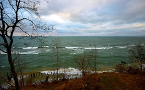 Picture sea, wave, autumn, the sky, trees, clouds, the wind