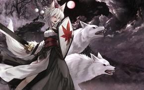 Picture girl, night, weapons, the moon, sword, anime, art, wolves, ears, touhou, inubashiri momiji, cloudy.r