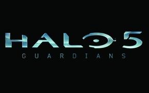 Picture Logo, Guardians, Halo 5, Logo