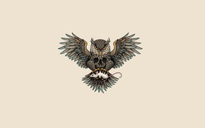 Picture owl, bird, mouse, light background, owl