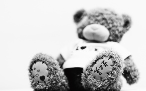 Picture black and white, bear, plush
