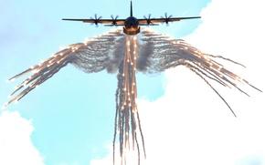 Picture USA, Lockheed, Hercules, The plane, Hercules, Lockheed, C-130, Military transport