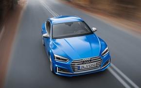Picture Audi, A5, Audi