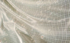 Wallpaper flowers, smoothness, lights, fabric, textiles, white, transparency, pattern, silk, Shine, cell