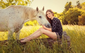 Wallpaper summer, horse, girl