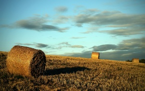 Picture field, the evening, rolls, the harvest