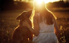 Picture girl, light, mood, dog
