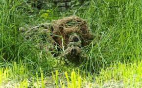 Picture GRASS, TRUNK, GREENS, OPTICS, RIFLE, DISGUISE, SNIPER