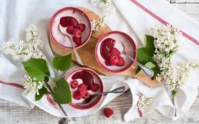 Picture raspberry, Breakfast, lilac, yogurt