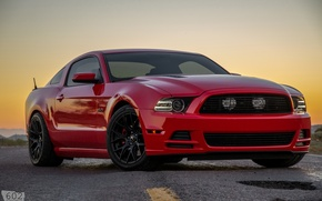 Picture Mustang, Ford, 2013