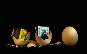 Picture egg, technology, evolution, film, waiting for the new, memory card