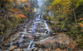 Picture autumn, forest, trees, mountains, river, stones, rocks, waterfall, stream