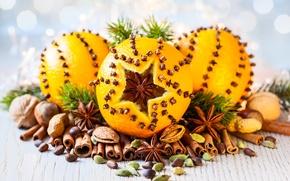 Picture orange, nuts, cinnamon, carnation, decor, star anise