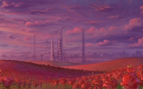 Picture field, the sky, roses, rocket, spaceport