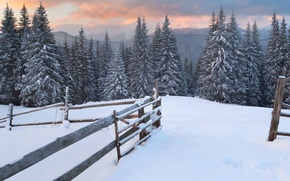 Picture forest, snow, trees, mountains, traces, the fence, tree, Winter, the evening