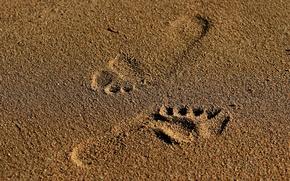 Picture sand, traces, prints, grains