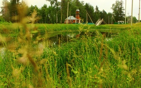 Picture grass, the building, River, nature.