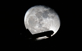 Wallpaper night, the moon, the plane, the rise, Airbus