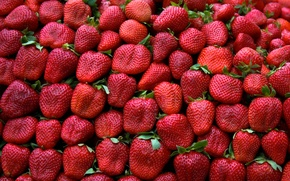 Picture green, red, pattern, leaves, fruit, strawberries