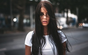 Picture road, look, girl, face, glare, street, model, portrait, brunette, t-shirt, white, beautiful, the beauty, beauty, …