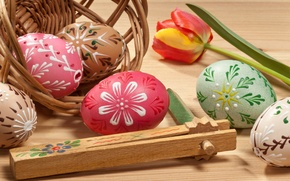 Picture flower, Tulip, eggs, Easter, eggs