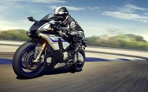 Picture Yamaha, moto, motorcycle, race, speed, superbike, sportbike, R1M