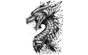 Wallpaper head, teeth, dragon, scales