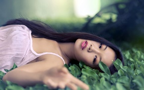 Picture greens, girl, brunette, Asian, lying on the grass, Lisa Ma