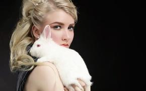 Picture Face, Rabbit, Maria Amanda