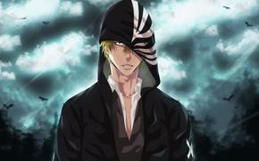 Picture anime, art, hood, guy, bleach, Ichigo Kurosaki, Shinigami