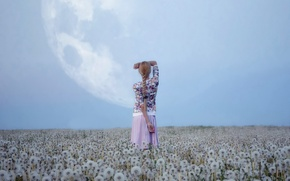 Picture field, the sky, girl, nature, the moon, dandelions
