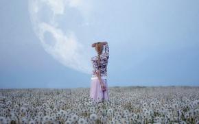 Wallpaper field, the sky, girl, nature, the moon, dandelions