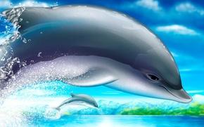 Wallpaper figure, Dolphin