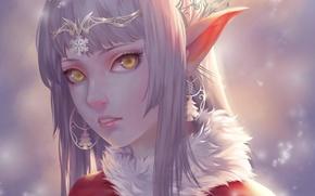 Picture look, decoration, art, elf, fantasy, ears