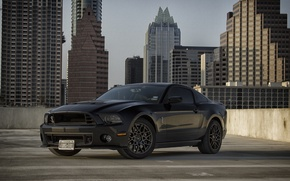 Picture Mustang, Ford, Shelby, GT500, Muscle, Car, Black, 2014