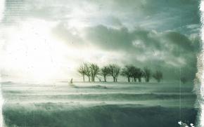 Wallpaper trees, sadness, Treatment, winter