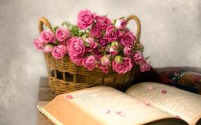 Wallpaper petals, basket, roses, book