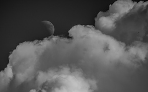 Picture clouds, the moon, The sky