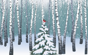 Picture Forest, Birds, Vector, Merry Christmas
