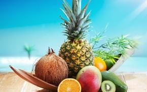 Picture background, Wallpaper, orange, food, coconut, kiwi, wallpaper, fruit, pineapple, widescreen, background, full screen, HD wallpapers, …