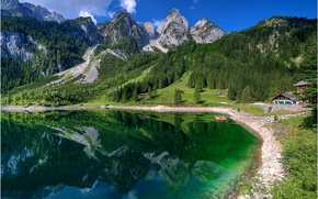 Picture forest, mountains, nature, lake, Switzerland