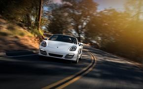 Picture Porsche, Car, Boxster, Speed, Front, Sun, White, Sport, 2013