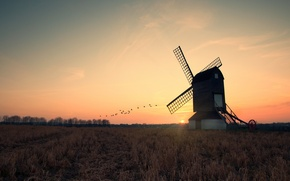 Picture field, the sun, sunset, the evening, mill, cranes